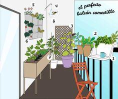 Un balcón comestible. #huertos #urbanos