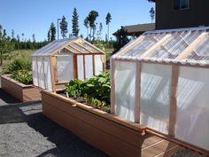 mini greenhouses 7