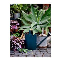 IKEA - SALLADSKÅL, Watering can, You can store water or a nutrient mixture in the can, so everything is ready when you water your plants. Ikea Planters, Interior Plants, Watering Can, Deco, The Great Outdoors, Beautiful Gardens, Garden Tools, Indoor Outdoor, Backyard