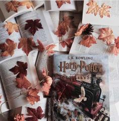 Image uploaded by A_Potterhead. Find images and videos about book, autumn and harry potter on We Heart It - the app to get lost in what you love. Harry Potter Ilustraciones, Wallpaper Harry Potter, Anniversaire Harry Potter, Autumn Aesthetic, Aesthetic Collage, Albus Dumbledore, Harry Potter Aesthetic, Harry Potter Books, Mischief Managed