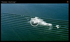 Surf Movies | Surf Video | Surf Movies| Surf Film | Surf DVD ...