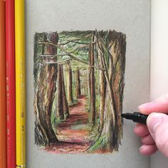 A little drawing from last year... #art #drawing #pen #sketch #illustration #forest #woodland