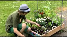 Jelle oogst in de Makkelijke Moestuin. Mini-moestuin voor kinderen bij Villa Achterwerk afl 4, via YouTube.