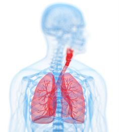 Medical and legal advice for mesothelioma cancer victims