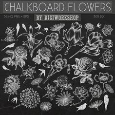 Hey, I found this really awesome Etsy listing at https://www.etsy.com/listing/182987091/chalkboard-flower-clip-art-clipart