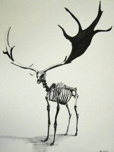 Irish elk skeleton. That's a heck of a rack to have to carry around.