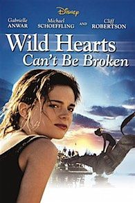 Wild Hearts Can't Be Broken