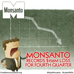Monsanto Co. reported that the company recorded a loss of $156 million in the latest quarter, a loss that was considerably higher than expected. The loss amounted to about 31 cents per share. Analysts expected a loss of around 24 cents per share. More here: http://www.fooddemocracynow.org/blog/2014/oct/14 #food #GMOs #LabelGMOs #StopMonsanto #DivestMonsanto