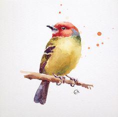 Watercolor Bird - Original Watercolor Painting 7 4/5 x 7 4/5 inches