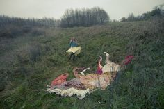 so in love with these! free people: the girl with 7 horses. photography project by ulrika kestere.
