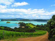 Waiheke Island, 35 minute from Auckland New Zealand Wine, Waiheke Island, Auckland New Zealand, Sandy Beaches, Us Images, Getting Married, Explore, Landscape, World