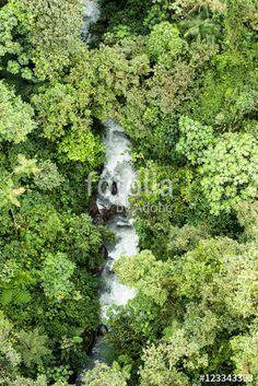 Ecuador, Herbs, Kakao, Photography, Photos, Woods, Destinations, Traveling, Farmers