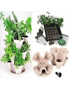 Garden Stacker Planter   Indoor Culinary Herb Garden Kit- Great Gift Idea- Grow Cooking Herbs- Seeds: Parsley Thyme Cilantro / Coriander Basil Dill Oregano Sweet Marjoram Chives Savory Garlic Chives Mustard & Sage- Includes Stackable Planter
