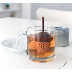 Acorn tea