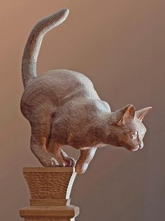 brown - cat - Carved Cat on a Bed Post - Jack Burgess - sculpture Sculptures Céramiques, Art Sculpture, Sculpture Ideas, Ceramic Animals, Art Plastique, Cat Art, Wood Art, Cats And Kittens, Sculpting