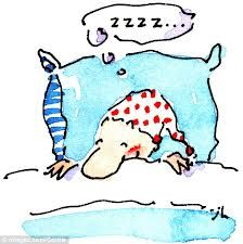 Camp Wander: 5 Remedies to Calm the Snore Monster