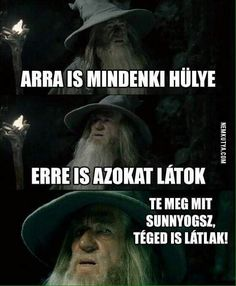 A Confused Gandalf meme. Caption your own images or memes with our Meme Generator. Silly Jokes, Funny Jokes, Hilarious, Funny Shit, Funny Stuff, Programming Humor, Funny Comebacks, Funny Character, Up Book