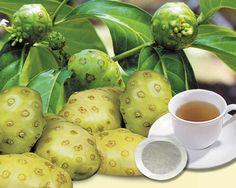 Health Benefits of the Noni Fruit - http://topnaturalremedies.net/natural-treatment/health-benefits-noni-fruit/
