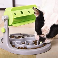 Slow Feeding Food Bowl Type: DogsMaterial: PlasticBrand Name: LanLan Smart Dog Toys, Food Bowl, Dog Lovers, Type, Summer, Summer Time