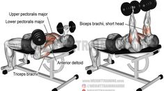 Incline reverse-grip dumbbell bench press exercise