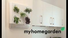 Design Kräutergarten für zu Hause