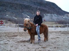 This cute Shetland pony named Donald (born in became 30 years old. He is here pictured with his last of many owners. My best friend owned Donald when he was about nine years old, so I have many good memories with him. My Best Friend, Best Friends, 30 Years Old, Best Memories, Norway, Pony, Horses, Heart, Cute