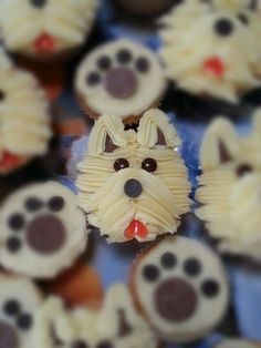Image result for male cupcake dog