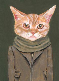 Cooper, A Cat in Clothes