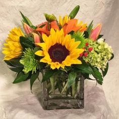 Sunflowers, Hydrangea, Hypericum, and Asiatic (non-fragrant) Lilies are complimented by chartreuse button chrysanthemums and fresh springy tulips. There are only a few luxury greens, and it is arranged compactly in a clear glass cube vase. This is shown at $49, but we can easily scale this up to a larger vase with more flowers! Select your price and we will make it look great! Order Brightly Cheerful! Vased Arrangement, Compact from WINDHAM FLOWERS - Brattleboro, VT Florist & Flower Sh...