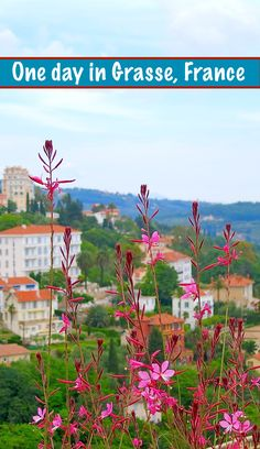 The town of Grasse, France, is known as the perfume capital of the world. Spending one day in Grasse may be the most fragrant trip you've ever taken. A South of France highlight and a great day trip from Nice. Read more for the perfect travel guide.