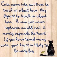 ~ My cats left paw prints on my heart. ~