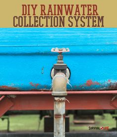 DIY rainwater collection system can save roughly a third of water usage per day. Survival Life is the best source for prepper survival tips and skills.
