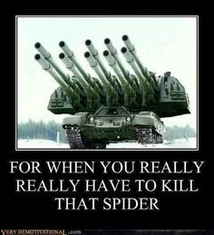 Nothing's too much when it comes to spiders