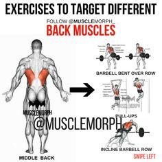 EXERCISE BACK MUSCLEMORPH https://musclemorphsupps.com/