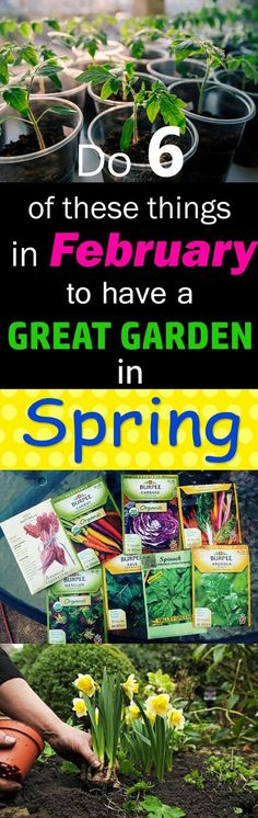Try these 6 ideas right now to have a great garden in the spring! #veggiegardens