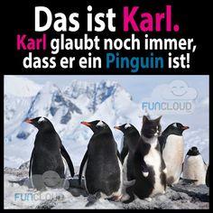 Karl                                                                                                                                                                                 Mehr