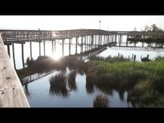 Why you should vacation in Duck, NC when visiting the Outer Banks.