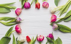 Download wallpapers spring, tulips, spring flowers, frame of tulips, spring concepts