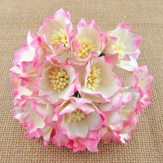 5 x Mulberry Paper Flowers LOTUS FLOWERS 35mm Card & Paper Craft Embellishments #WildOrchidCrafts
