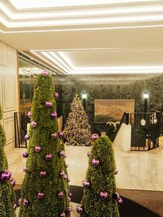 There is no place like ! This year you will feel like home here with us in a festive mood and with lots of smiles ! Christmas Offers, Christmas And New Year, Christmas Holidays, Xmas, Christmas Tree, Acropolis, Ginger Cats, Cat Design, Palace