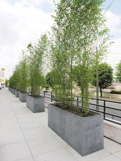 Lightweight GRP Barrier Planter | Livingreen Design