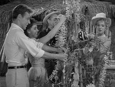 Some of the Gilligan Island crew decorating their little Christmas tree on the island -- they sure had more 'stuff' with them for just a little 3 hour cruise! Little Christmas Trees, Merry Christmas And Happy New Year, Christmas Music, Retro Christmas, Santa Christmas, Happy Holidays, Christmas Classics, Christmas Stars, Merry Xmas