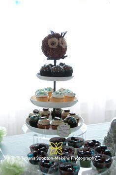 Owl Theme Cupcake Stand Decor - Baby Boy - Baby Shower