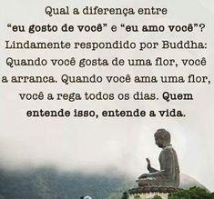 """EQUILÍBRIO: Diferença entre """"eu gosto de você"""" e, Buddha True Quotes, Words Quotes, Sayings, Bloom Quotes, Buddhist Quotes, A Guy Like You, Weird World, Osho, Quotations"""
