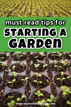 How to start a garden. Must read gardening tips for beginners. Tips to help you to grow a bountiful garden full of fruit, vegetables, flowers, & more. Types Of Soil, Types Of Plants, Gardening For Beginners, Gardening Tips, Plant Companies, Bountiful Garden, Small Backyard Design, Starting A Vegetable Garden, Different Plants