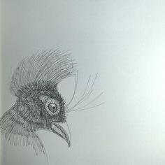 2015, sketch by Angela Kuckartz