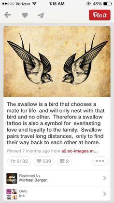 Symon swallows again