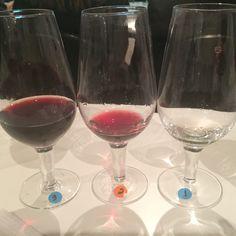Degustação de vinhos da Toscana - ABS SPaulo - maio 2015.