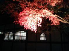 福岡市は福岡県にあります