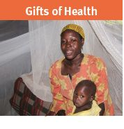 Pay for a family dental visit, mosquito nets or pre/post natal support.